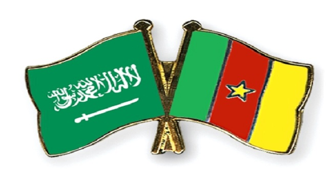 Saudi parliamentary delegation in Yaounde