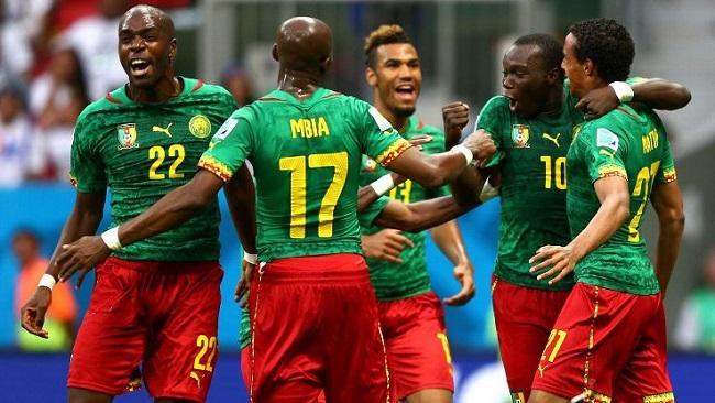 Indomitable Lions: Hugo Broos drops Captain Stephane Mbia