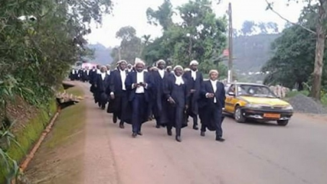 Cameroon anglophone lawyers may be closing in on Biya