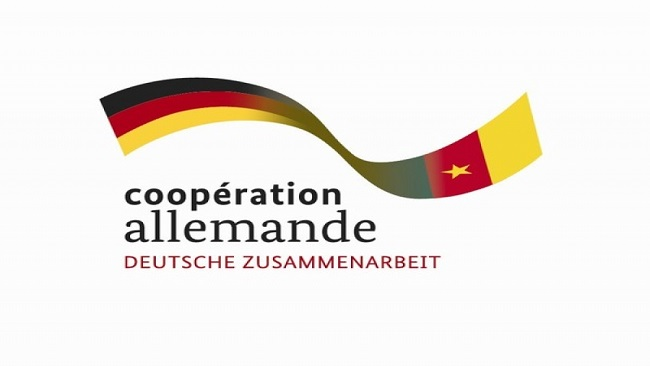 Germany suspends micro project grants to Cameroon