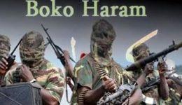 27 Boko Haram secret agents arrested in Cameroon