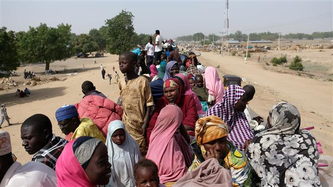 170 Nigerians who fled Boko Haram war evacuated from Cameroon