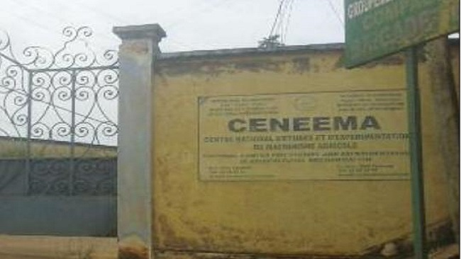 Exposed: The true scale of President Biya's deal with the General Manager of CENEEMA
