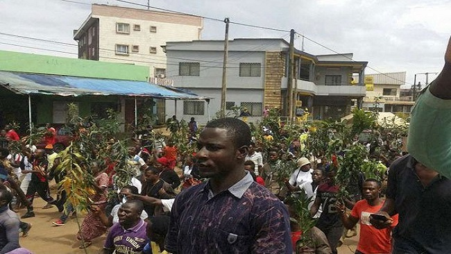Southern Cameroons declare 'self rule'