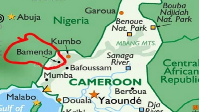 Southern Cameroons Crisis: Medical doctor shot in Bamenda