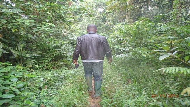 Ambazonia Liberation Struggle: A Holy Odey Chi War?