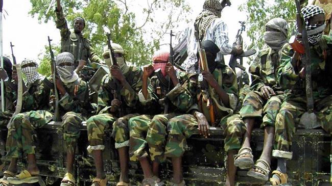 Cameroon, Nigeria cooperating in counter-terrorism