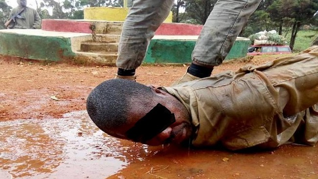 Genocide in Southern Cameroons: Minister Joseph Beti Assomo's investigation will go nowhere
