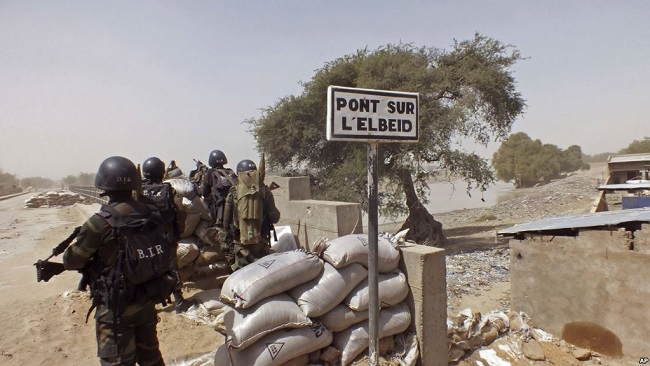 French Cameroun army kills 10 Boko Haram militants in repelled attack
