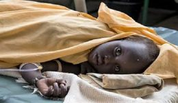 Yaounde reports over 980 cholera cases, 45 deaths since beginning of 2020