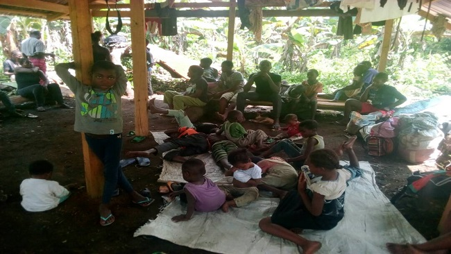 Southern Cameroons Crisis: Government steps up attacks