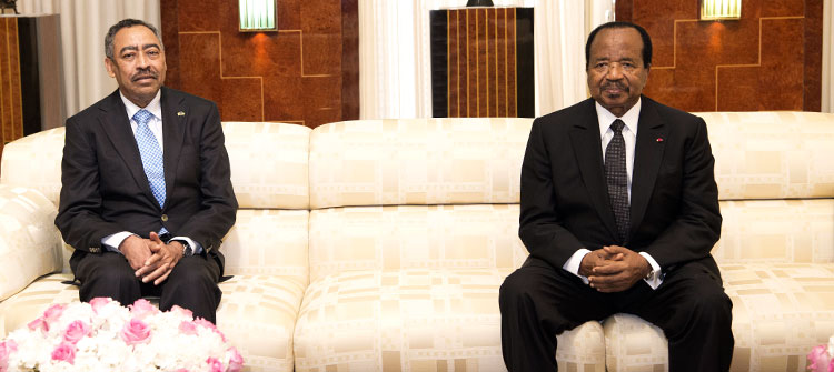Dumping expired military hardware: Yaounde and Riyadh to begin security cooperation