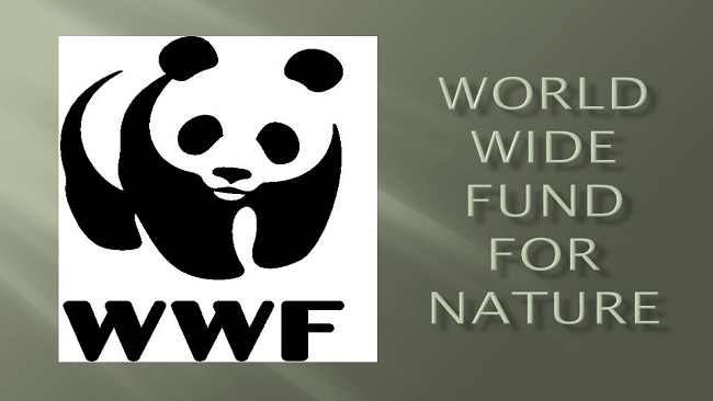 WWF-funded forces in Cameroon have tortured and killed indigenous people