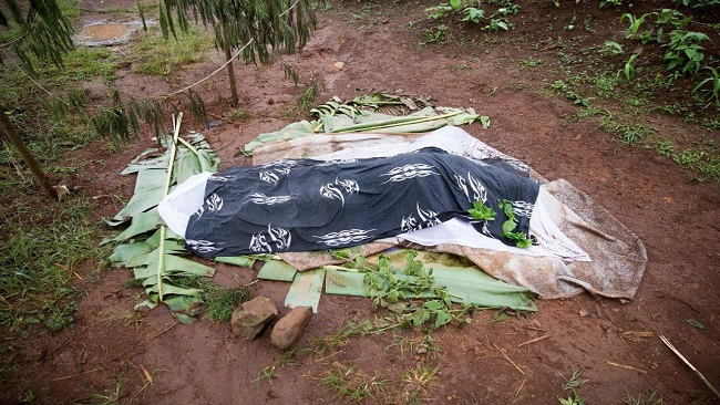 UN calls on Biya regime to investigate anglophone village massacre