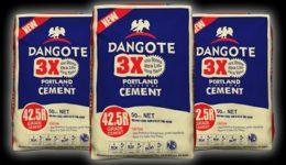 Southern Cameroons Crisis: Dangote Cement sees 7% sales drop