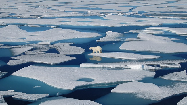 Over 10 billion tons of ice melted in one day in Greenland