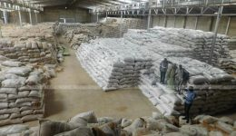 Cameroonians outraged by imported rice as local rice left unsold