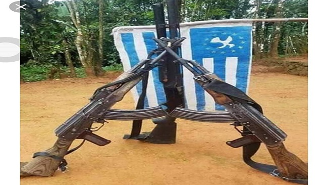 Southern Cameroons Crisis: Five Cameroon gov't troops killed in Ambazonia Attack (Video)