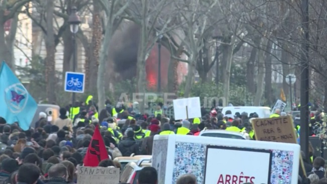 Tear gas, dozens of arrests in fresh anti-Macron protest in Paris