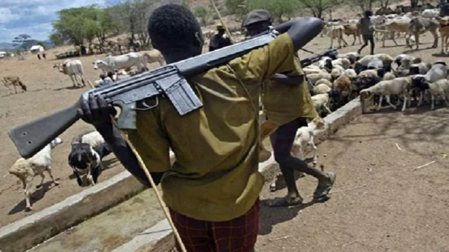 Fulani against Ambaboys: Southern Cameroons expanding deadly conflict