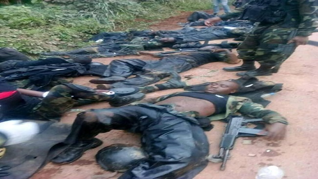 Southern Cameroons Crisis: Amba fighters kill 7 Cameroon gov't army soldiers