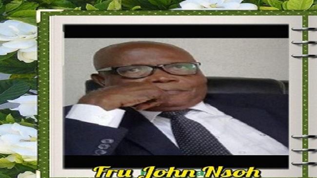 Southern Cameroons Crisis: Fru John Nsoh Must Go Home