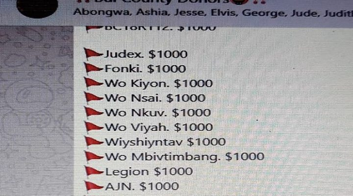 Professional scamming in the Southern Cameroons struggle at unprecedented levels