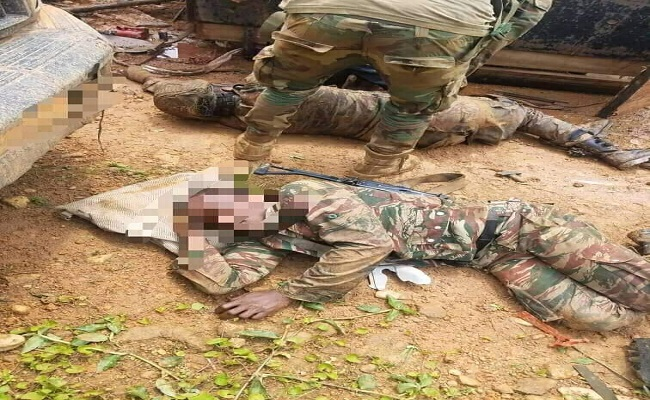 Cameroon gov't army soldiers are dying in Southern Cameroons