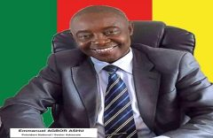 Of Barrister Emmanuel Agbor Ashu, attacks on the Interim Government and the Ambazonian people
