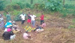 Southern Cameroons Crisis: Chaos in Wum as gov't soldiers, Mbororo militants attack Southern Cameroonians